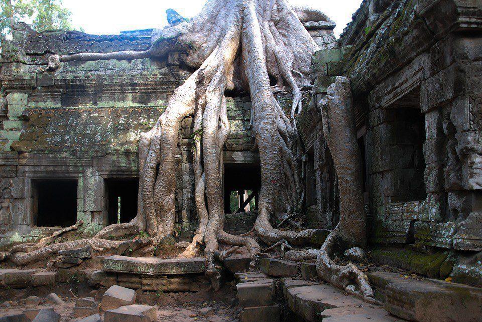 cambogia tempio siem reap
