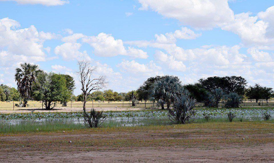 namibia paesaggio