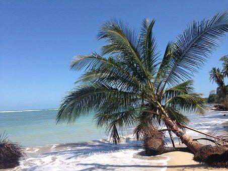 costarica spiaggia  Costarica: Panorama Tico & Self Drive – Tour Individuale costarica 4