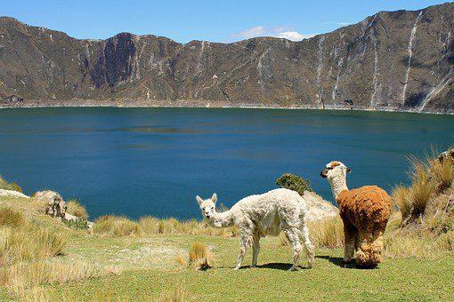 ecuador paesaggio