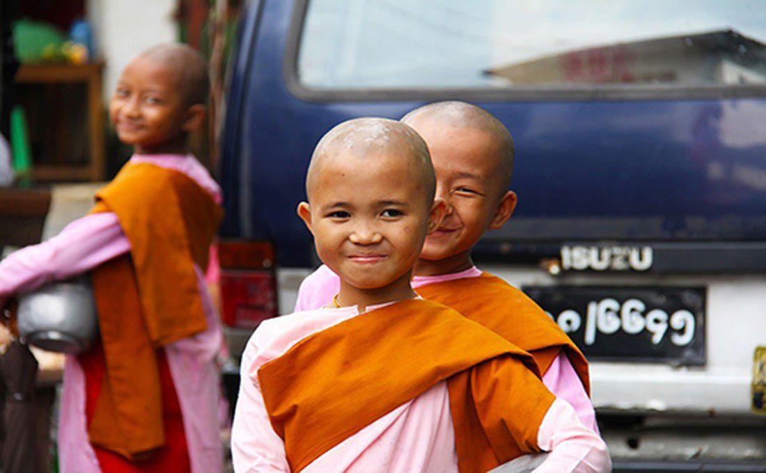 birmania novizi