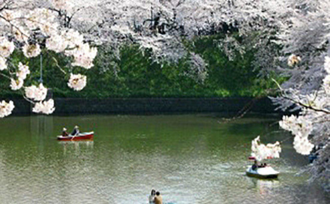 giappone paesaggio  - giappone autentico2 - Giappone