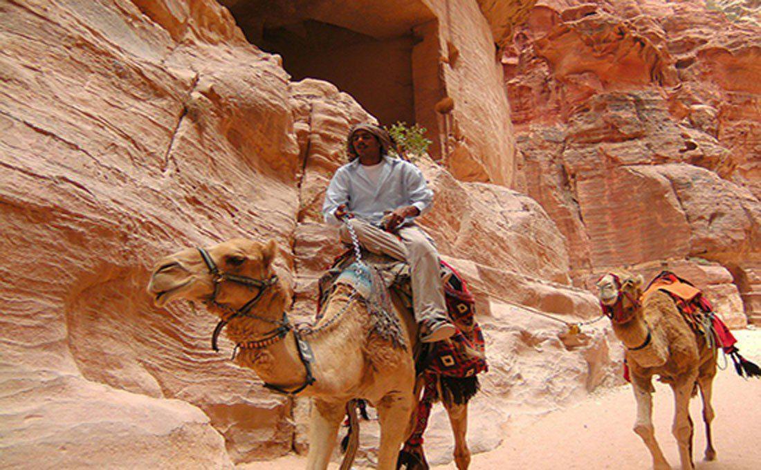giordania escursione con cammelli