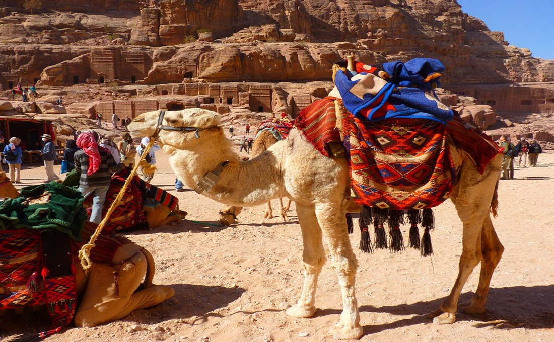 petra giordania  - petra giordania - Offerte Natale e Capodanno
