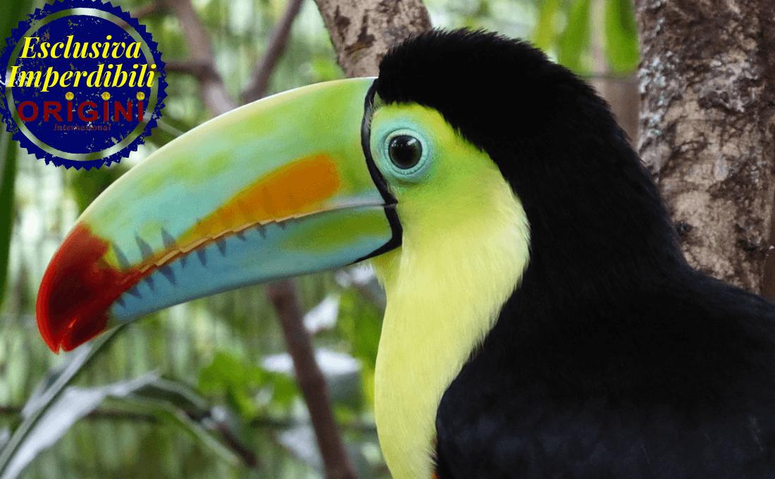 Costa Rica dating cultura